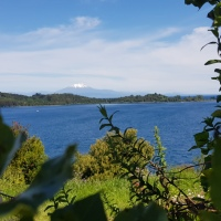 Una gran convocatoria se espera para la jornada de limpieza del Lago Llanquihue