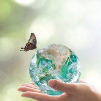 Turismo Sostenible: Nuevo curso online y gratuito