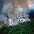 """Emergencia medioambiental: El """"pulmón del planeta"""" se quema"""
