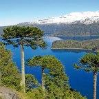 Corfo lanza concurso Desafío de Experiencias Turísticas para emprendimientos de la Araucanía