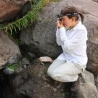 Las desconocidas plantas descubiertas en la Reserva Nacional Río de Los Cipreses